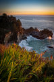 coast, coastal, water, pacific, big sur, sur, big, sunset, twilight, mcway falls, waterfalls, surf, waves, highway 1, hwy 1,  julia, pfeiffer, burns, ca, california flora, crocosmia