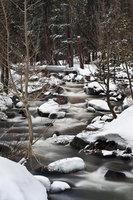 eastern sierra, sierra, aspens,  bishop creek, north fork, spring, ca, california, trees, water, snow, mountains