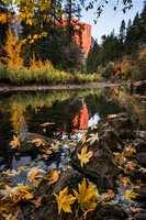 Merced River, Yosemite Valley, merced, river, yosemite, valley, ca, california, sierra, mountains, trees, dogwood, fall, valley view, leaves, reflections, landscape