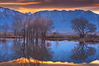 farmers pond, sierra, eastern, bishop, water, sunset, reflection, mt tom
