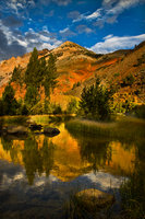 eastern sierra, sierra, aspens, fall, fall color, ca, california, trees, storm, winter, sunrise, bishop, north, lake, water, mountains