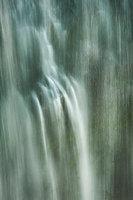 mt rainier, corn lily, northwest, pacific, plants, washington, water, waterfalls, narada, falls