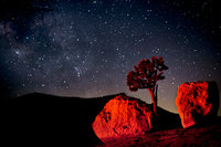 yosemite, olmsted point, stars, milky way, trees, mountains, sierra, ca, california, high country, night skies