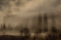 <p>merced river, merced, river, yosemite, ca, california, valley view, valley, view, sunset, el capitan, sierra, mountains, trees, water, fog, mist, twilight</p>