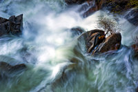 yosemite, water, cascade creek, spring, mountains, sierra, ca, california,