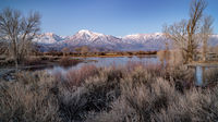 eastern sierra, mountains, clouds, sunset, bishop, ca, california, mountain light, winter, sierra, lenticular,  owens river valley, owens, river, dawn