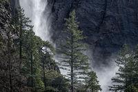 red bud, trees, merced river, yosemite national park, mountains, water, sierra, merced, ca, california, bridalveil falls, water falls, waterfalls,