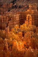 bryce national park, bryce hoodoos, sunset point, winter, southwest, sunset, AZ, UT, arizona, utah, indian land, mountains, desert