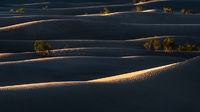 death valley national park, death valley, sunrise, dunes, stovepipe wells, california, ca, sand dunes