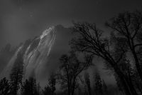 Yosemite, California, Ca, Sierra, valley, Yosemite national park, black oak, el Capitan meadow, black white, meadow, el capitan, trees stars, moonlight,