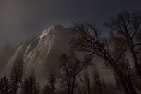 Yosemite, California, Ca, Sierra, valley, Yosemite national park, black oak, el Capitan meadow, meadow, el capitan, trees stars, moonlight,