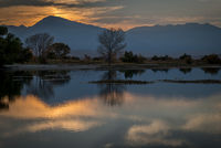 eastern sierra, sierra, aspens, bishop, fall, ca, california, trees, water, mountains, fall colors, fall colors, sunset, farmers pond, clouds
