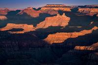 Grand Canyon, Arizona, AZ, colorado river, southwest, west, sunrise, south rim, lupine point
