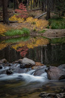 yosemite, national park, sierra, valley, fall, trees, merced, flora, mountains, leaves, ca, colors, dogwoods, merced river, merced, maples,