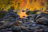 Sierra, fall. color, fall colors, mountains, trees, landscape, Bishop, aspens, california, north lake, reflections