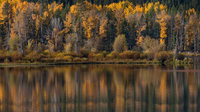 snake river, snake, river, mountains, landscape, tetons, grand tetons, sunset, clouds, storm, jackson, trees, national park, water, fall, fall colors, aspens