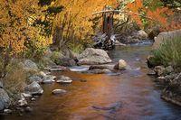 eastern sierra, sierra, aspens,  bishop creek, South fork, fall, ca, california, trees, water, mountains, fall colors, bishop