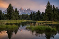 mountains, Wyoming, wy, Tetons, Grand Teton Park, landscape, Fall, trees, aspens, fall color, jackson, schwabaker landing, sunrise, snake river,