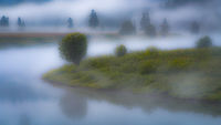 grand teton national park, tetons, snake river, snake, river, mountains, trees, water, color, aspens, clouds, fog, dawn, atmospherics