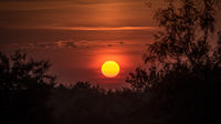 texas, tx, wichita falls, sunrise, fog