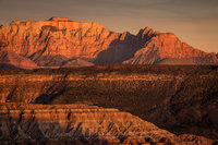 trees, fall, fall color, zion, mountains, utah, ut, southwest, virgin, river, virgin river,  cottonwoods, twilight, sunset, towers of the virgin, towers, smith mesa