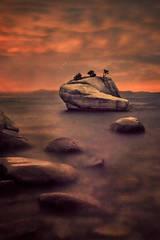 eastern sierra, sierra, clouds, sunrise,  spring, ca, california, lake tahoe, north shore, boulders, rocks, bonsai rock, water, stars, twilight, stars