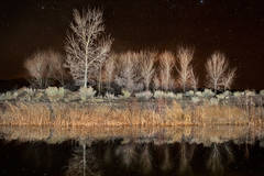 cottonwoods, water, reflections, ca, california, sierra, eastern, trees, sunset, milky way, stars,  bishop, mountains, ponds, owens river valley, owens river