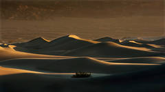 mesquite flat, sand, dunes, death, valley, ca, california, sunrise, desert, southwest,