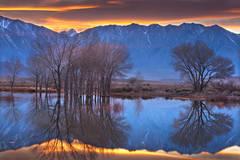 farmers pond, sierra, eastern, bishop, water, sunset, reflection, mt tom