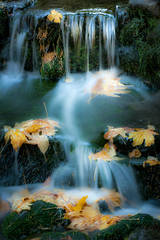 fern spring, water, fall, yosemite, mountains, waterfalls, sierra, ca, california, sierra, falls