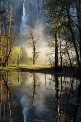 <p>merced river, merced, river, yosemite, yosemite falls, swinging bridge, ca, california, sunrise, sierra, mountains, trees, water, spring, colors, trees, reflections</p>