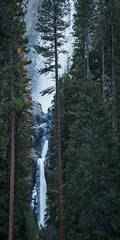 Yosemite, California, Ca, Sierra, valley, Yosemite national park, Yosemite Falls, trees, sunset, water, winter