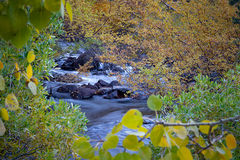 Eastern Sierra, Sierra, CA, California, Fall, mountains, foliage, leaves, autumn, aspens, flora, trees, water, bishop, creek, rock creek, light