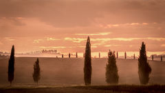 europe, italy, tuscany, pienza, siena, villa, wine, grapes, fields, sunset, clouds, valley, val d'orchia, sunrise, trees, cypress