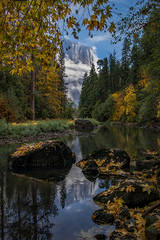 Yosemite, Sierra, mountains, yosemite valley, fall, merced river, merced, water, maples, fall color, fall, reflection, el capitan, clouds