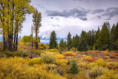 grand teton national park, tetons, snake river, snake, river, mountains, trees, water, color, aspens, clouds, meadows, fall, autumn, colors, cottonwoods