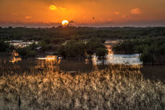 everglades, florida, fl, national, park, water, sunset, birds, wetlands
