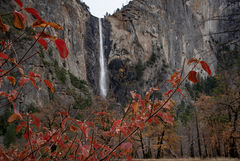 yosemite, fall, national park, sierra, mountains, trees, merced, river, dogwood, sierra nevada, water, bridalveil falls, yosemite valley