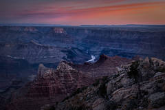 Grand Canyon, Arizona, AZ, colorado river, southwest, west, sunrise, south rim, lupine point