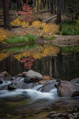 yosemite, national park, sierra, valley, fall, trees, merced, flora, mountains, leaves, ca, colors, merced river, merced, maples,