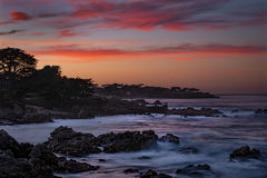 monterey, bay, ca, california, sunset, water, ocean, pacific, flora, aloes, aloe, cypress, sunrise, surf, rocks, coastline, coast, sea stacks, alpine glow