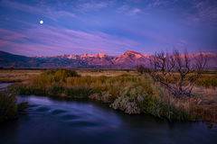 Eastern Sierra, Sierra, CA, California, Fall, mountains, foliage, leaves, autumn, aspens, flora, trees, water, bishop, creek, rock creek, light, owens, river, moon, sunrise