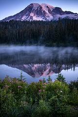 washington, wa, mt rainier, reflection lake, wildflowers, cascades, cascade, mountains, water, lakes, sunrise, reflection