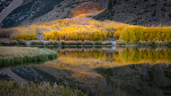 Eastern Sierra, Sierra, CA, California, Fall, mountains, foliage, leaves, autumn, aspens, flora, trees, water, bishop, creek, rock creek, light, north lake