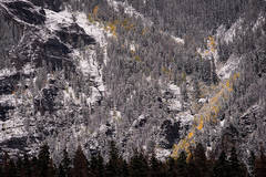 Rocky Mountains, San Juan mountains, rockies, san juans, fall, autumn, color, trees, aspen, pine, fir, colorado, co, owl creek, rainbow, ridgway