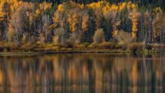 snake river, snake, river, mountains, landscape, tetons, grand tetons, sunset, clouds, storm, jackson, trees, national park, water, fall, fall colors, aspens