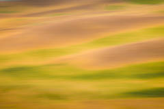 farms, fields, plants, palouse, WA, blur, impressions, landscape