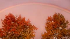 mountains, Wyoming, wy, jackson, Tetons, Grand Teton Park, landscape, Fall, trees, aspens, fall color, snake river, oxbow bend, dawn, sunrise, water, rainbow