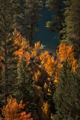 Sierra, fall. color, fall colors, mountains, trees, landscape, rock creek, aspens, california, north lake, reflections, fly fishing, fishing