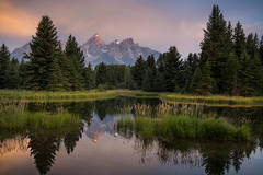 mountains, Wyoming, wy, Tetons, Grand Teton Park, landscape, Fall, trees, aspens, fall color, jackson, schwabaker landing, sunrise, snake river,